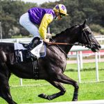 French Racing Tips – 18 October Pt 2