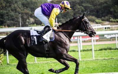 French Racing Tips – 25 August