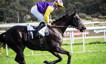 French Racing Tips – 08 September