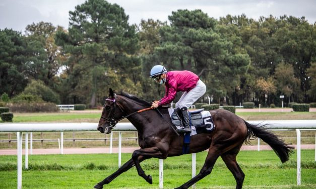 French Racing Tips – 23 September