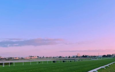 Today's French Racing Tips – 14/03/21