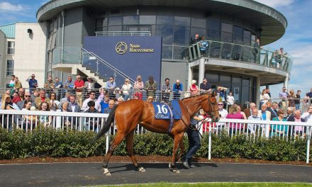 Irish Racing: Which racecourse had the best attendance before Covid?