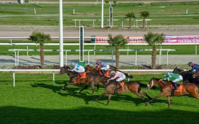 Today's French Racing Tips – 01/03/21