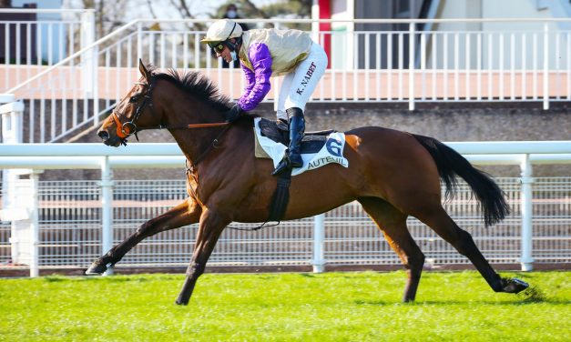Racehorse ownership in France